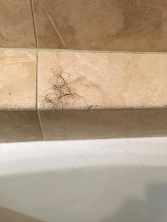 Gleneden Beach, OR: Hair in shower