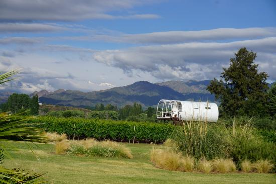 Entre Cielos: You can stay here instead of a room. In the vineyard