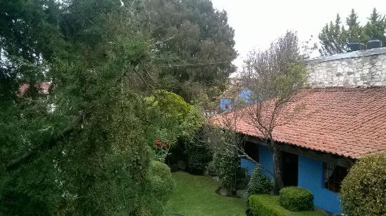 Foto de la casa azul huasca huasca de ocampo jard n for Jardin azul canal 9