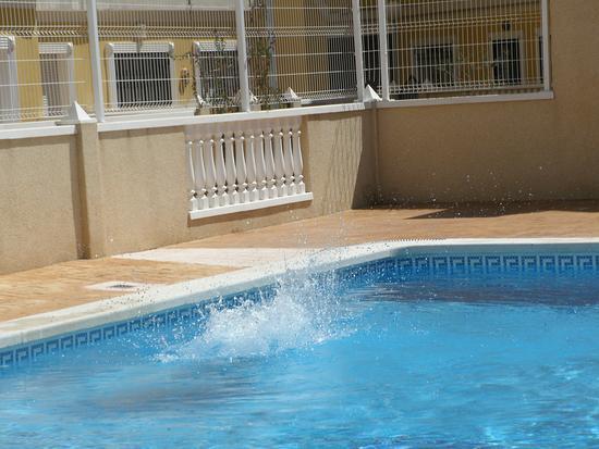 Almoradi, إسبانيا: Jason jumping in pool