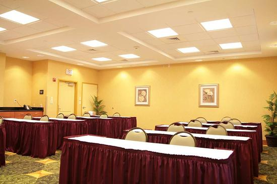 Hampton Inn & Suites Orlando - South Lake Buena Vista: Meeting Room
