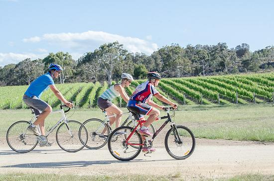 Swansea, Australia: Milton vineyard cycle tour