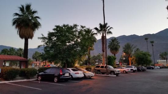 The Saguaro Palm Springs, a Joie de Vivre Hotel