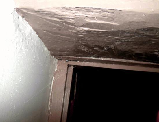 Cape Jervis, ออสเตรเลีย: Spiders website across door into bedroom Settlers Cottage