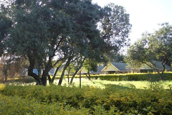 Rhino Tourist Camp Resmi