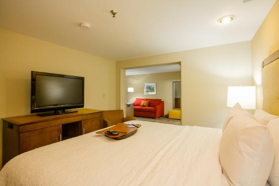 Hampton Inn Atlanta - Northlake: Guestroom