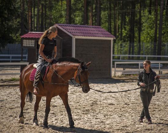 Horse Sport Club Komarovo