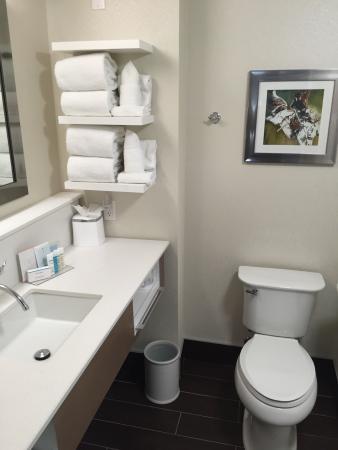 Hampton Inn & Suites By Hilton Calgary- University Northwest: Nice bathroom