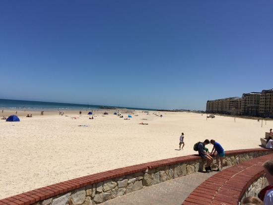 From the pier looking up the beach at Glenelg