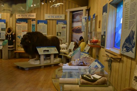 Inuvik, Canada : Western Arctic Regional Visitor Centre