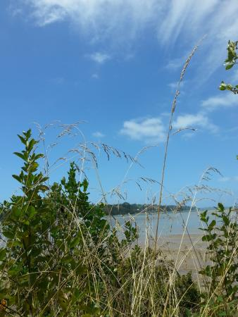 Hobsonville, Nova Zelândia: View from cycle way