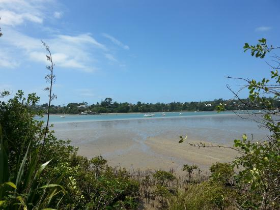 Hobsonville, Nova Zelândia: Gorgeous even at low tide