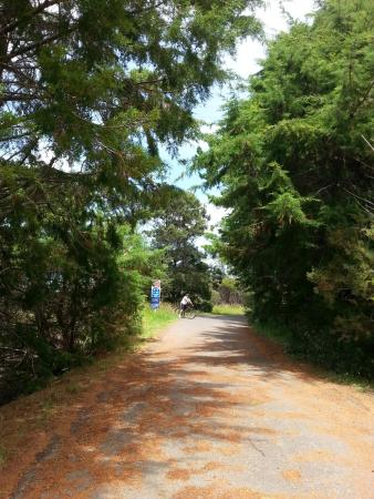 Hobsonville, Nouvelle-Zélande : Beautiful cycle paths