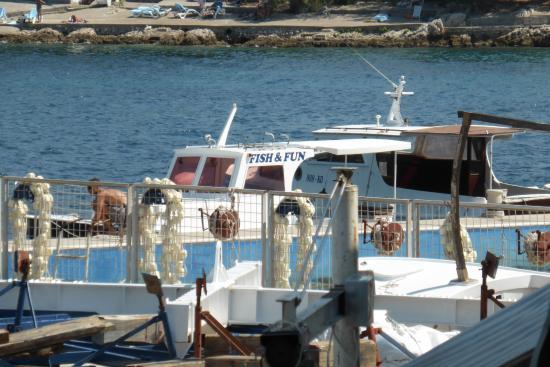 Korcula Island Photo