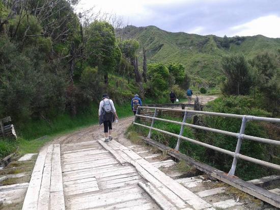 Stratford, Selandia Baru: Walking the old Whangamomona Road