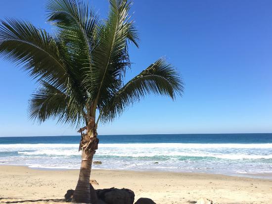 Imanta Resort: Beach