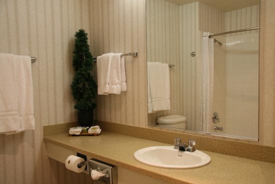 Holiday Inn Selma-Swan Court: Guest Bathroom