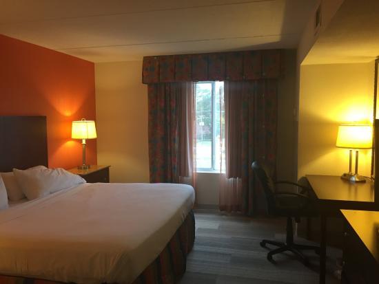 Holiday Inn Express Petersburg-Fort Lee: Guest Room