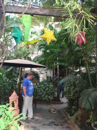 Golden Mango Inn: photo2.jpg