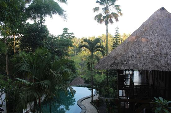 Graha Moding Villas: The view overlooking the pool and valley