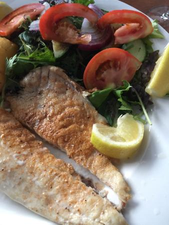 Devonport, New Zealand: Great Greek Dishes