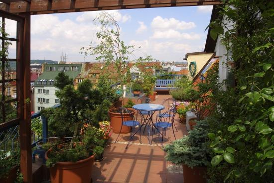 Hotel Orion: Suite n. 64 terrace