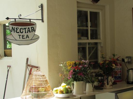 Cafe Photo Albert: photo3.jpg