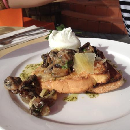 วางกานูอี, นิวซีแลนด์: mushrooms on toast...BEST EVER...
