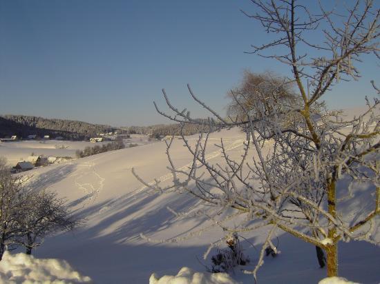 Lauterbach, Alemania: Winter im Schwarzwald