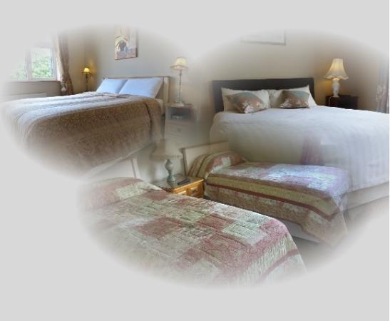 Ати, Ирландия: Rooms