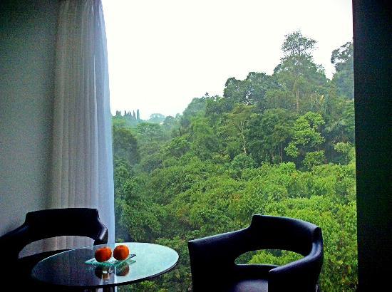 Padma Hotel Bandung: Morning shot from the room