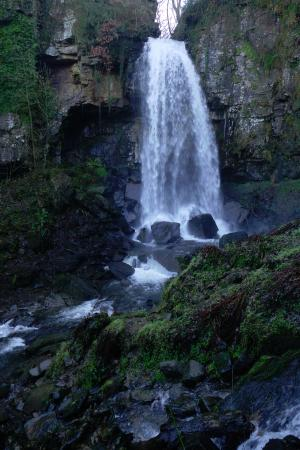 Melincourt Waterfall