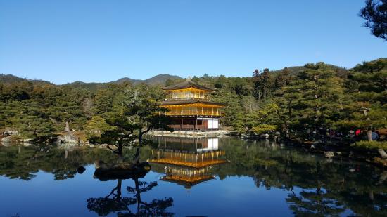 Kinkakuji Temple: morning view