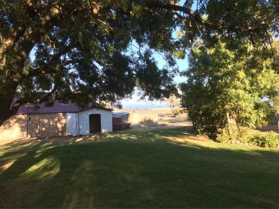 Cape Jervis, Australia: photo2.jpg