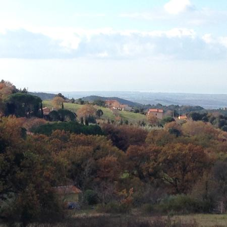 Castellina Marittima, Itália: photo1.jpg