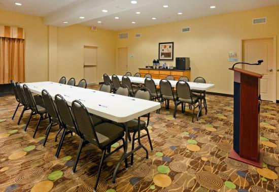 Holiday Inn Express Hotel & Suites Greenville: Meeting Room