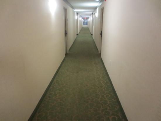 Extended Stay America - Jacksonville - Baymeadows: hallway is a little dingy and depressing.
