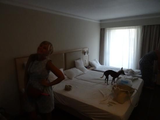 Triton Hotel Resmi
