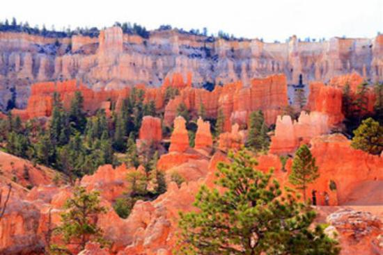 Bryce Canyon National Park Picture Of Best Western Plus