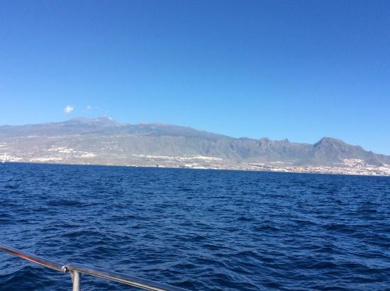Eden Catamaran: Fantastic views