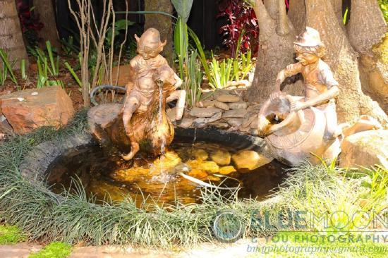 ซาบี, แอฟริกาใต้: Garden