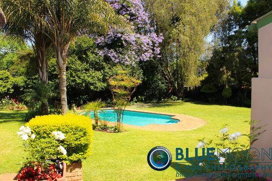 ซาบี, แอฟริกาใต้: Garden & swimming pool