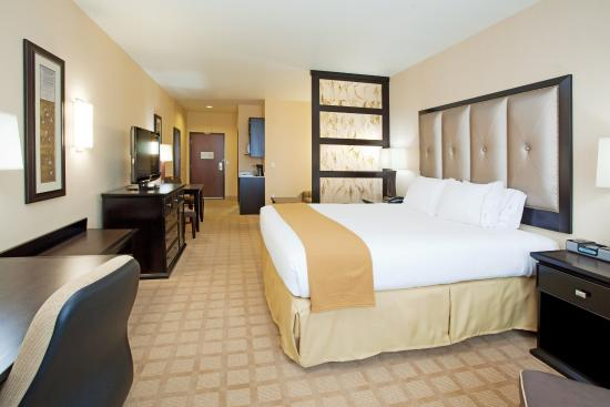 Holiday Inn Express Hotel & Suites Denver Northeast - Brighton: King Bed Suite