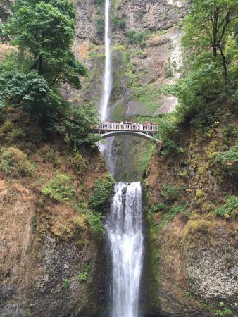 how to get to multnomah falls