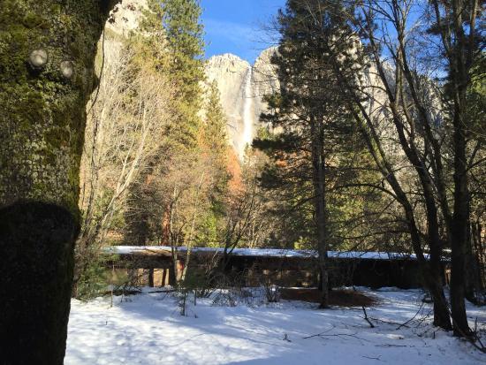 Picture of yosemite valley lodge yosemite for Yosemite valley cabins