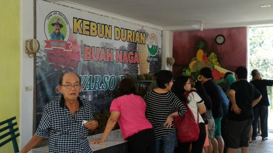 Warso Durian Farm