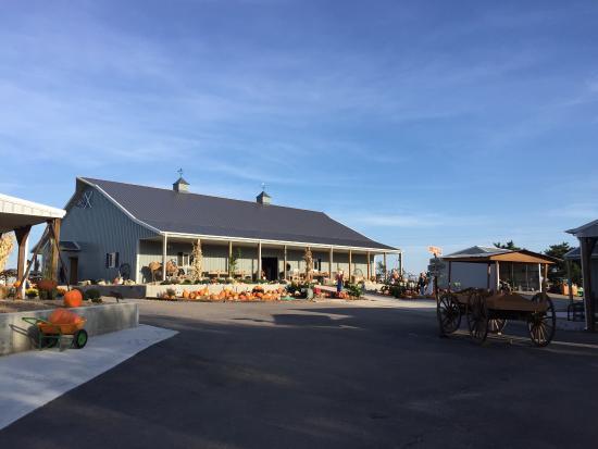The Walters' Farm