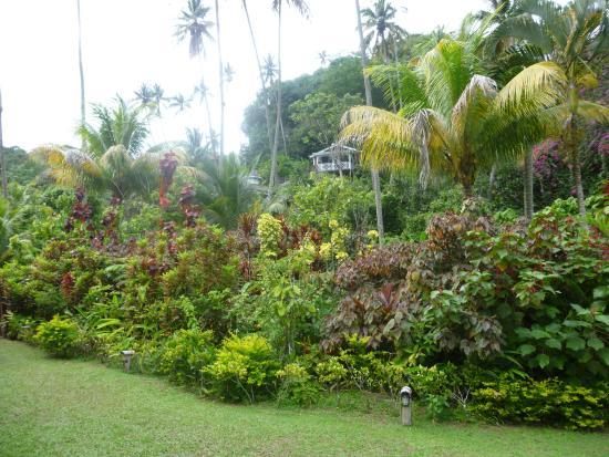 Bilde fra Fond Doux Plantation & Resort