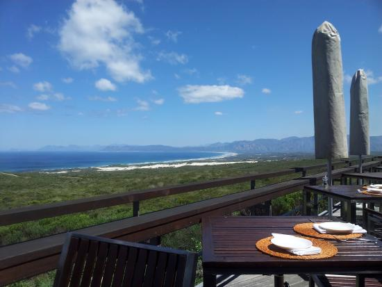 Grootbos Private Nature Reserve, جنوب أفريقيا: View from Breakfast area