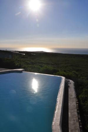 Grootbos Private Nature Reserve, جنوب أفريقيا: Public Pool